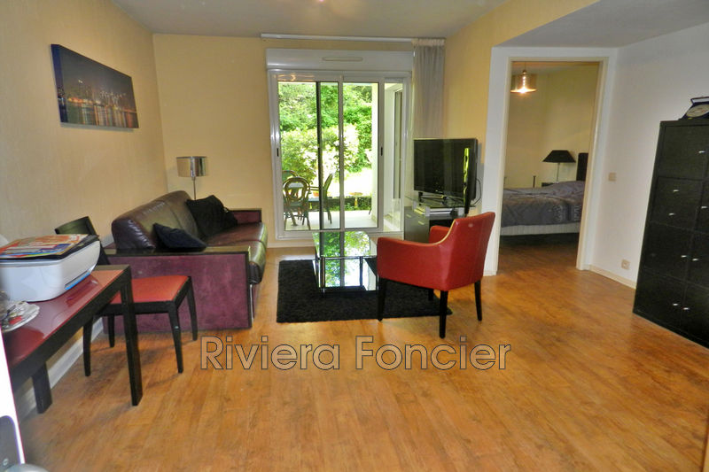 Photo Appartement Antibes   achat appartement  2 pièces   39 m²