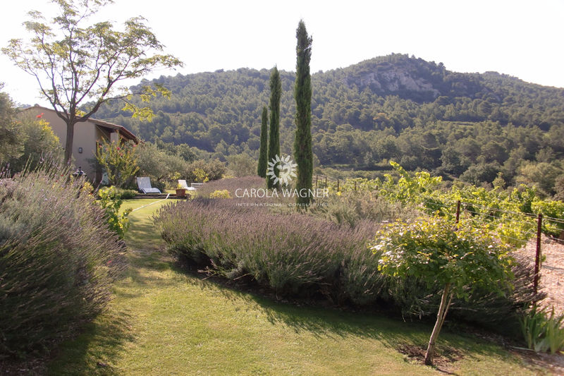 Villa Beaumes-de-Venise Proche mt ventoux,   to buy villa  7 bedroom   250 m²
