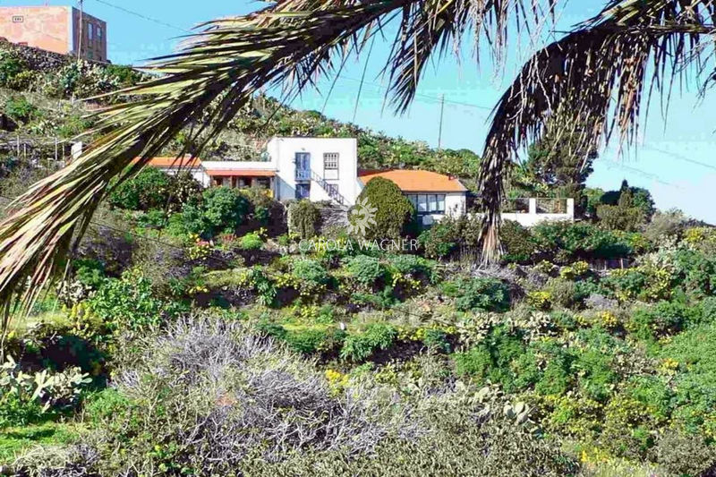 Photo Country house GarafÍa La palma iles canaries,   to buy country house  3 bedroom   100 m²