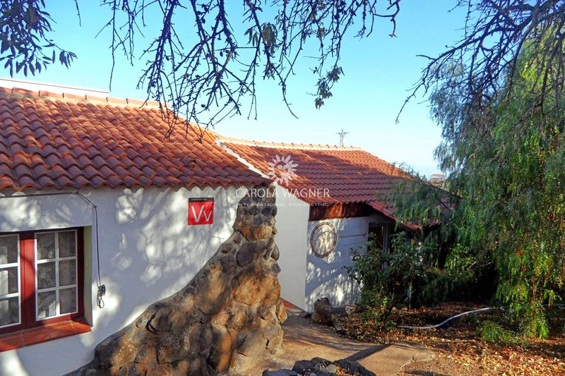 Village house Puntagorda La palma,   to buy village house  3 bedroom   110 m²