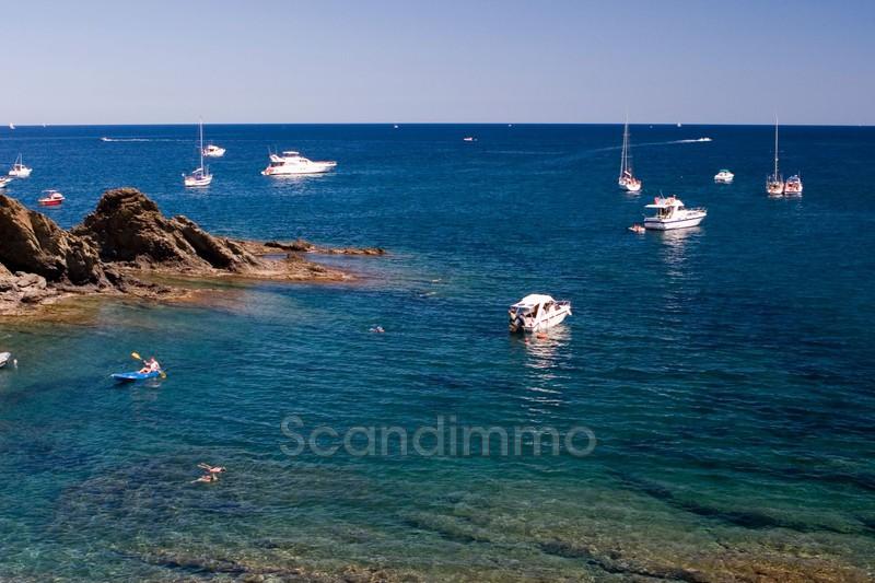 Photo n°12 -  appartement Port-Vendres 66660 - 375 000 €