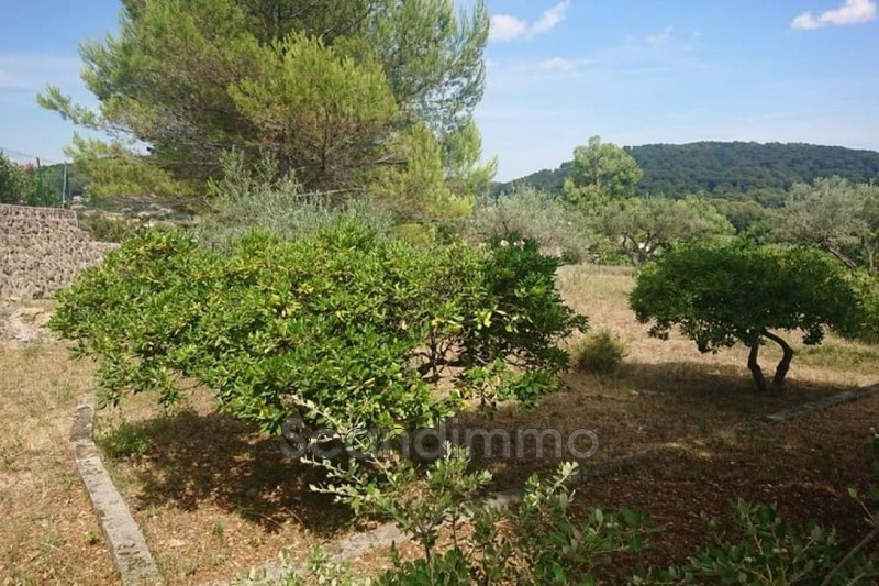 Photo n°2 - Vente terrain Lorgues 83510 - 135 000 €