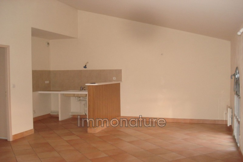 Photo n°3 - Location appartement Laroque 34190 - 540 €