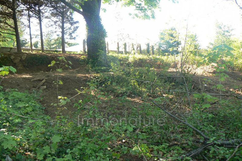 Photo Terrain Le Vigan   achat terrain   992 m²