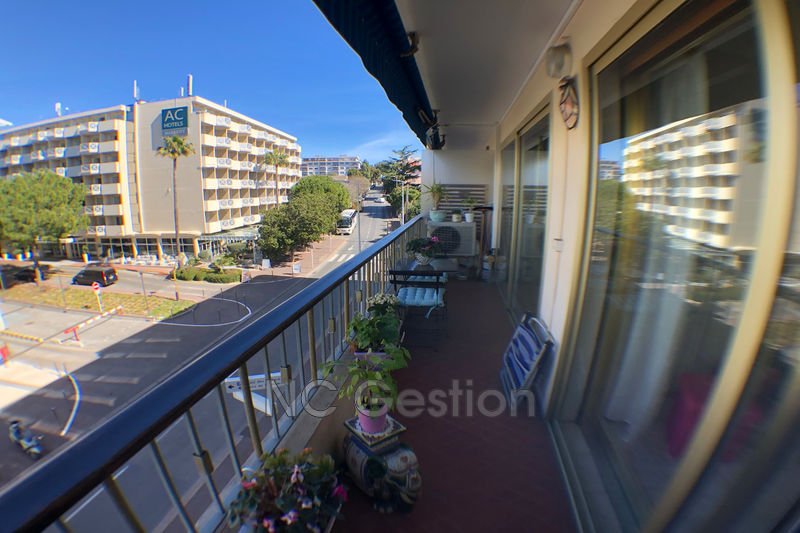 Photo n°6 - Location appartement Antibes 06600 - 1 300 €