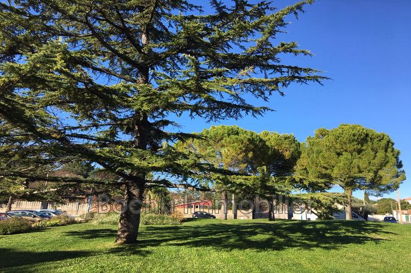 Photo n°2 - Vente appartement Castelnau-le-Lez 34170 - Prix sur demande