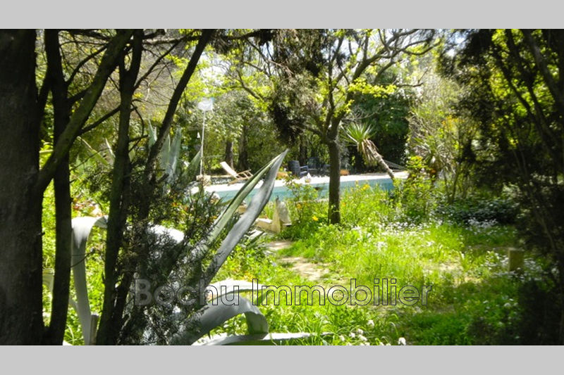 Photo n°7 - Vente Maison villa Castelnau-le-Lez 34170 - 750 000 €