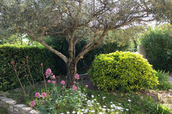 Photos  Maison Villa à vendre Castelnau 34170