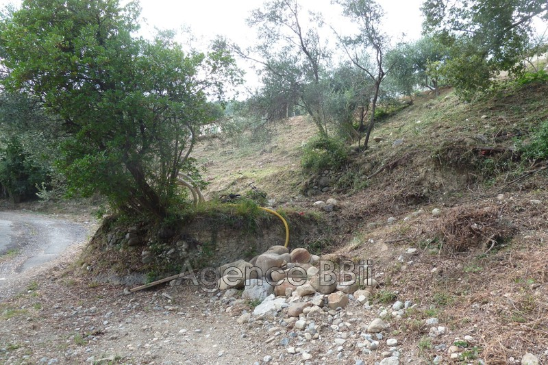 Photo Terrain Levens   achat terrain