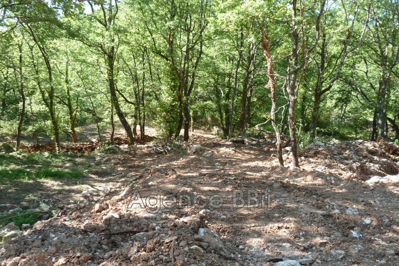 Photo n°3 - Vente terrain constructible Tourrette-Levens 06690 - 160 000 €
