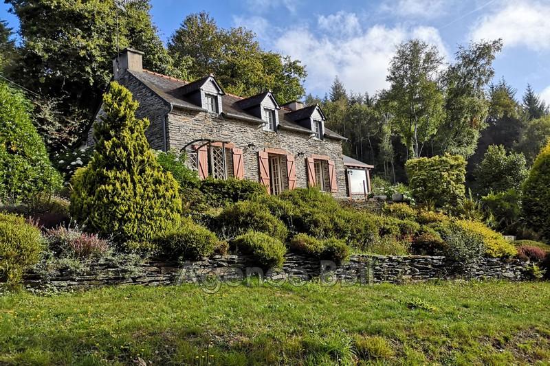 Maison en pierre Caurel Proche du lac,   achat maison en pierre  3 chambres   90m²