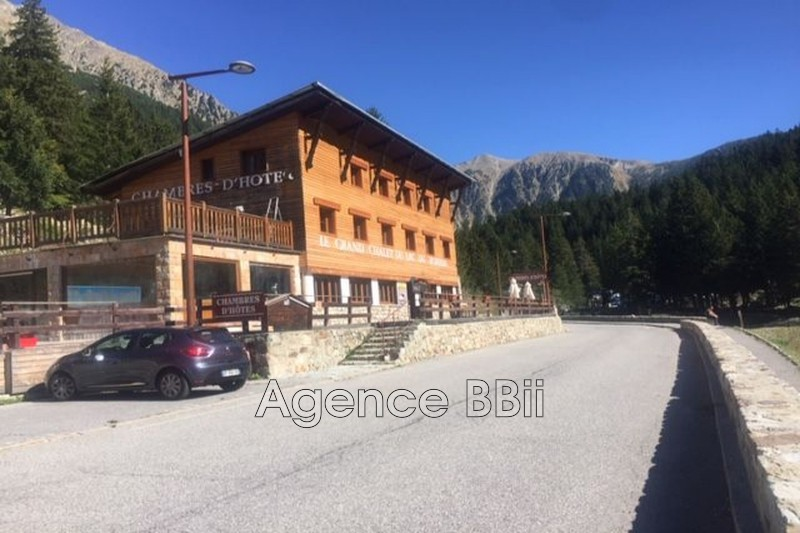 Chalet Saint-Martin-Vésubie Montagne,   to buy chalet  14 bedroom   750 m²