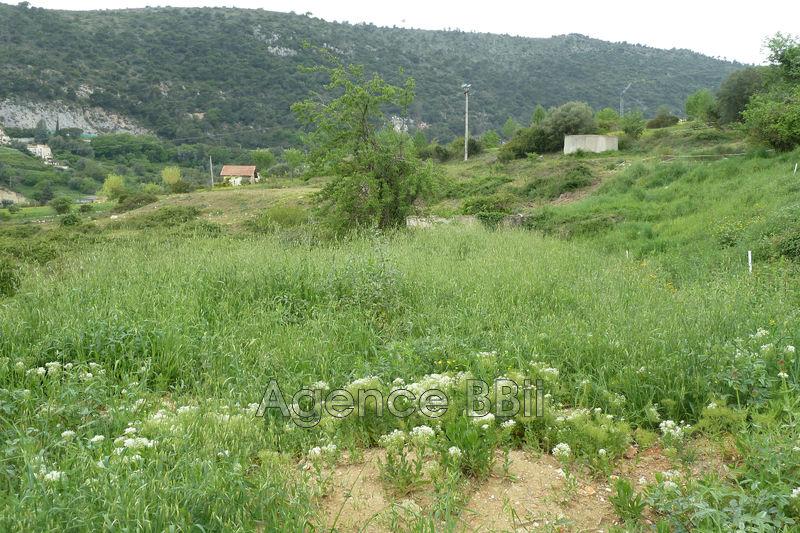Terrain Falicon Campagne,   achat terrain   1542m²