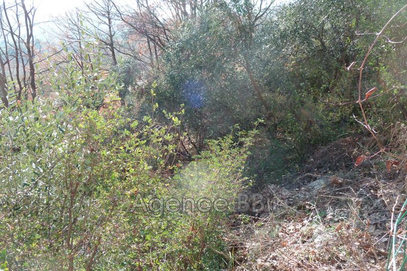 Photo n°7 - Vente terrain Levens 06670 - 150 000 €