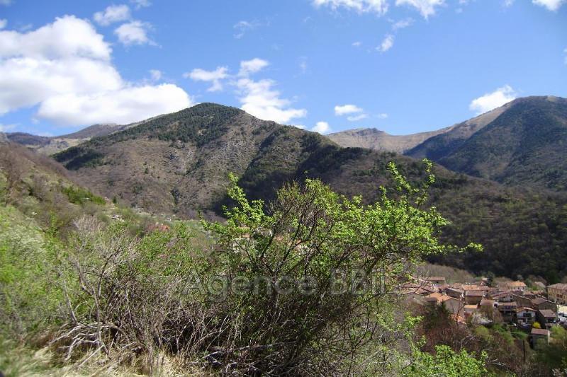Land Moulinet Montagne,   to buy land   4800m²
