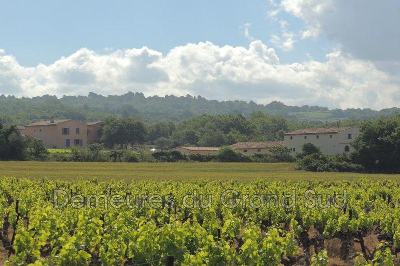 Photo Domaine viticole Bédoin Ventoux,   achat domaine viticole  8 chambres   450m²