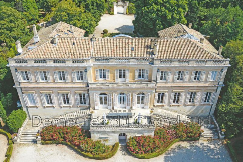 Photo Castle Avignon Grand avignon,   to buy castle   1500 m²