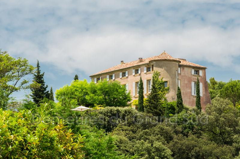 Photo Château Vaison-la-Romaine Ventoux,   achat château  20 pièces   508m²