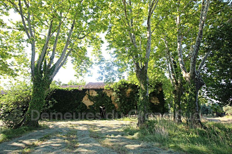 Photo Mas Châteauneuf-du-Pape Grand avignon,   to buy mas  2 room   400 m²