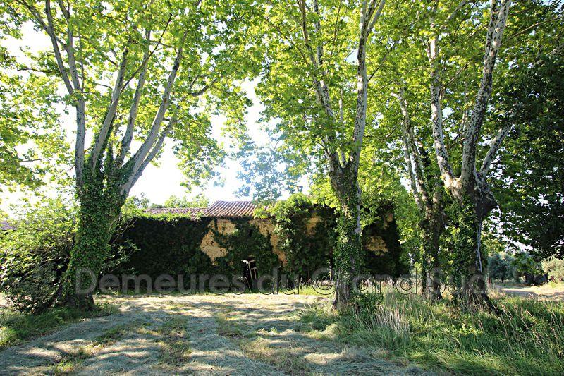 Photo Mas Châteauneuf-du-Pape Grand avignon,   achat mas  2 pièces   400m²