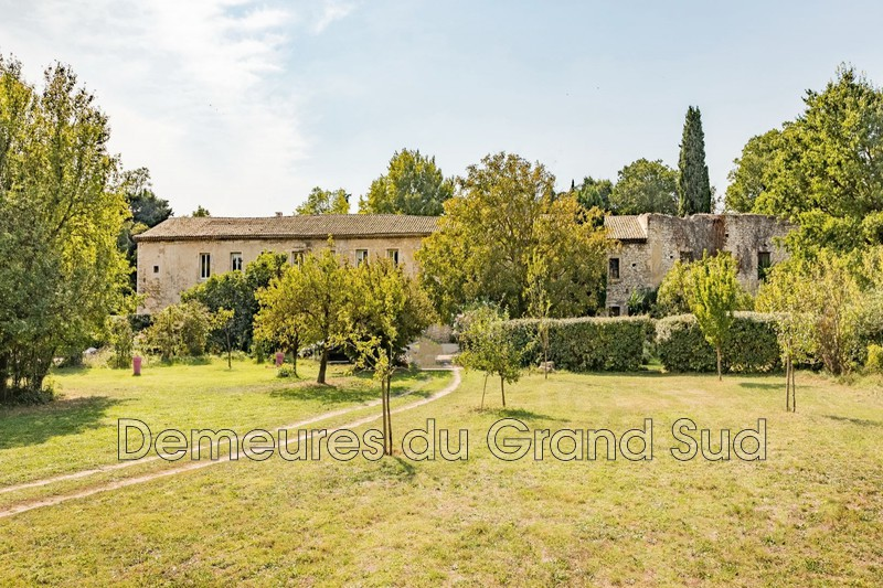 Photo Mas Tavel Grand avignon,   achat mas  7 chambres   600 m²