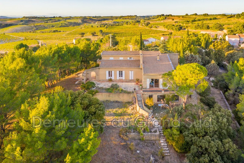 Photo Village house Châteauneuf-du-Pape Grand avignon,   to buy village house  5 bedroom   380 m²