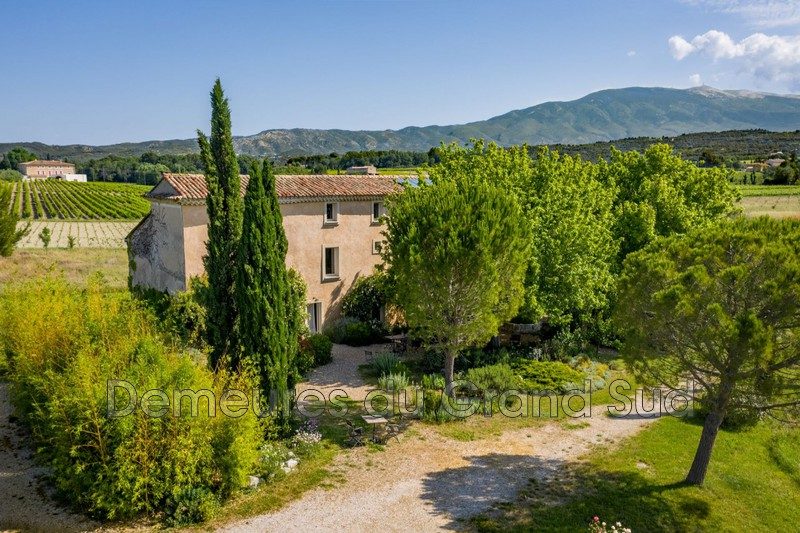 Photo Mas Caromb Ventoux,   to buy mas  6 bedroom   375 m²