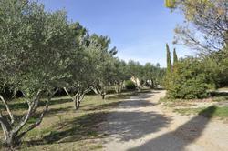 Photos  Maison Propriété à vendre Clermont-l'Hérault 34800
