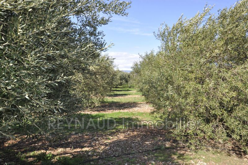 Photo Land Clermont-l'Hérault   to buy land   9200 m²