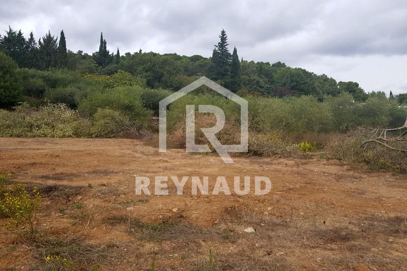 Photo Terrain Clermont-l'Hérault Lac du salagou,   achat terrain   506m²