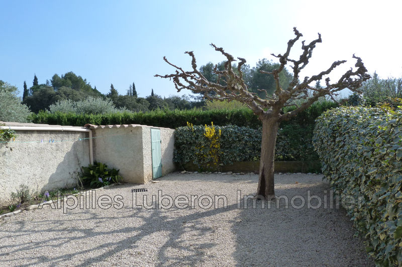 Photo n°2 - Location Maison villa Eygalières 13810 - 700 €