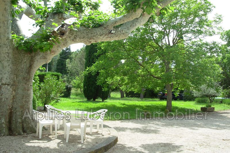 Photo n°2 - Location Maison mas Eygalières 13810 - Prix sur demande