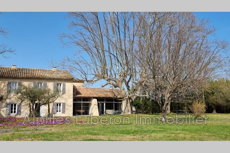 Photo Mas Eygalières Campagne,   achat mas  3 chambres   250m²