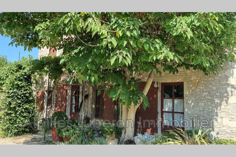 Photo Village house Eygalières Proche village,   to buy village house  2 bedroom   120m²