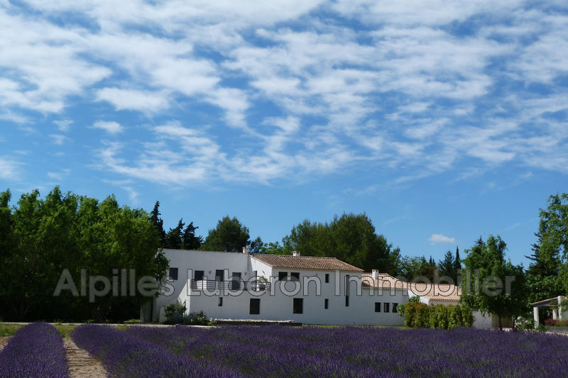 Photo Contemporary house Eygalières Campagne,   to buy contemporary house  5 bedroom   300 m²