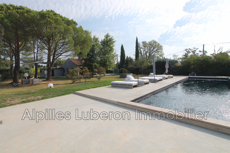Photo House Saint-Rémy-de-Provence Campagne,   to buy house  4 bedroom   181 m²