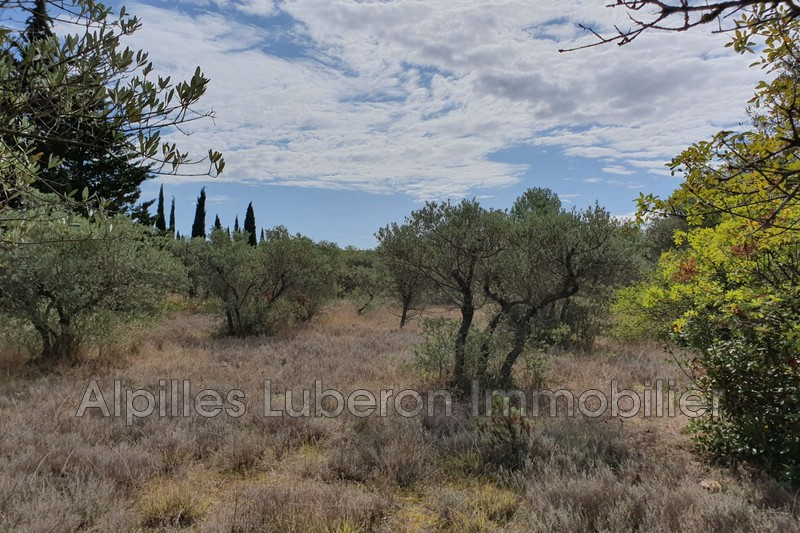 Land Eygalières Campagne,   to buy land   2500 m²