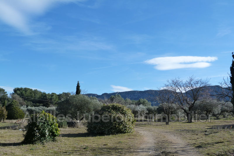 Photo Villa Saint-Rémy-de-Provence Campagne,   to buy villa  4 bedroom   170 m²
