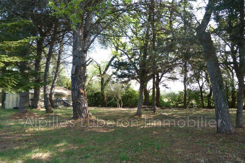 Photo n°7 - Sale nature maison de campagne Saint-Rémy-de-Provence 13210 - 840 000 €