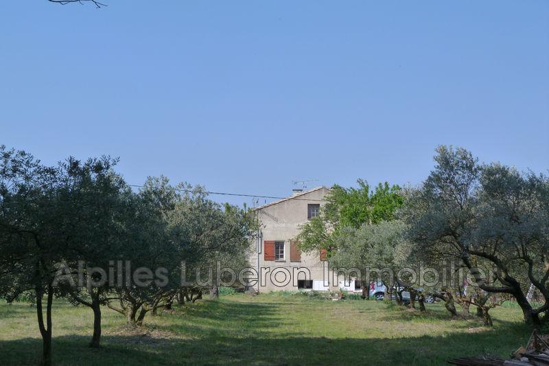Photo n°9 - Sale nature maison de campagne Saint-Rémy-de-Provence 13210 - 840 000 €