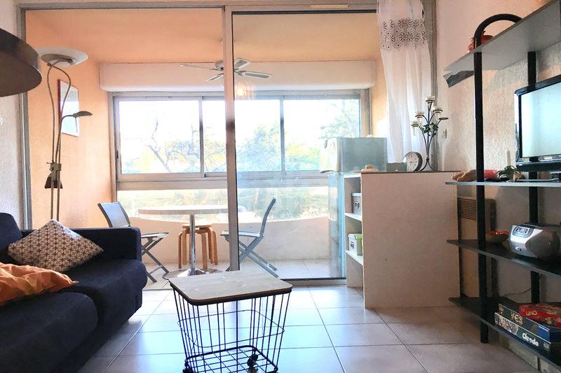 Appartement Argelès-sur-Mer   achat appartement  2 pièces   30m²