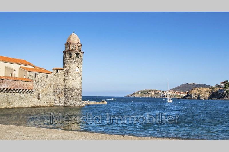 Photo  Collioure Bord de mer,  Professionnel    106m²