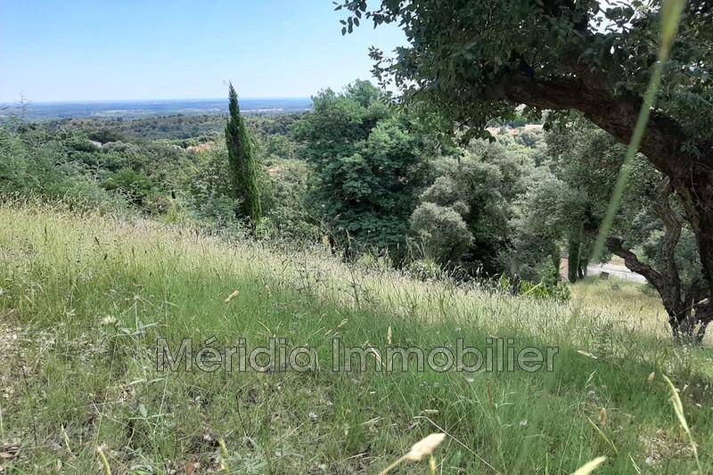 Photo Terrain Montesquieu-des-Albères Montesquieu les albères,   achat terrain   1100m²
