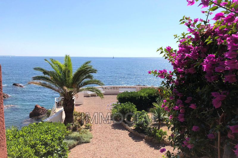 Photo n°3 - Vente appartement Saint-Raphaël 83700 - 520 000 €
