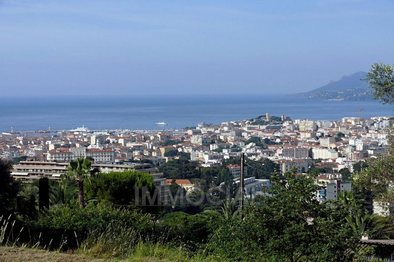Photo n°11 - Vente appartement Cannes 06400 - 255 000 €