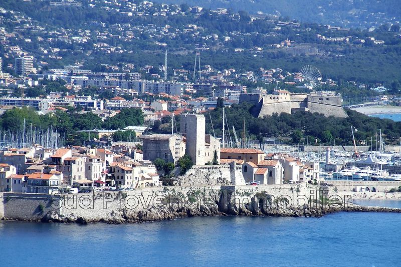 Antibes Centre-ville,  Occupational