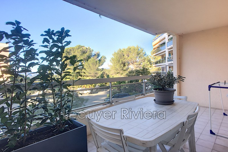 Photo Appartement Mougins Proche centre helio marin,  Location appartement  2 pièces   52 m²