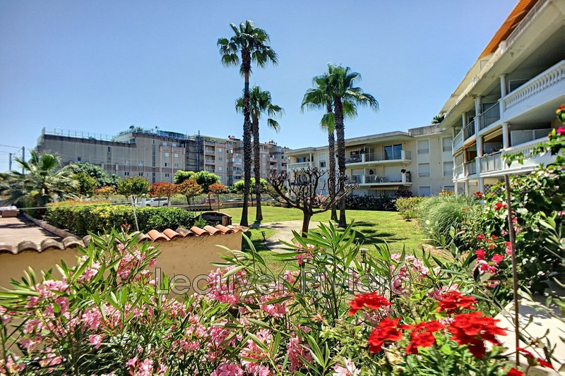 Photo Apartment Golfe-Juan Golfe juan,   to buy apartment  2 rooms   42 m²