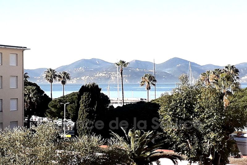 Photo Apartment Cannes Palm beach,  Rentals apartment  2 rooms   53 m²