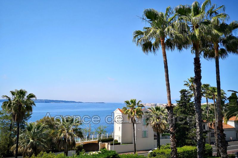 Photo Apartment Cannes Basse californie,   to buy apartment  3 rooms   113 m²